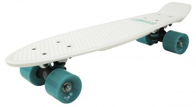 D-STREET Pennyboard (White/Mint)